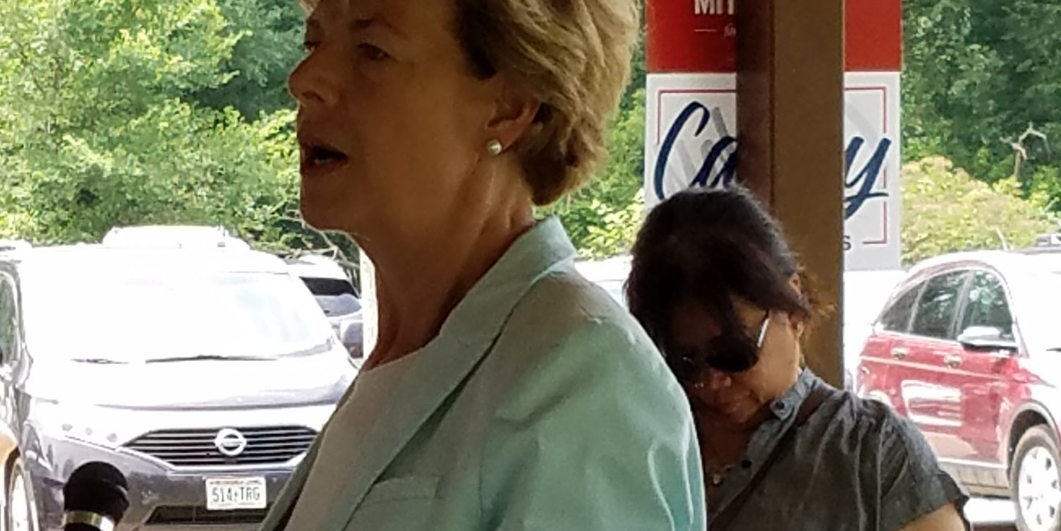 Tammy Baldwin speaking at KCDP annual picnic