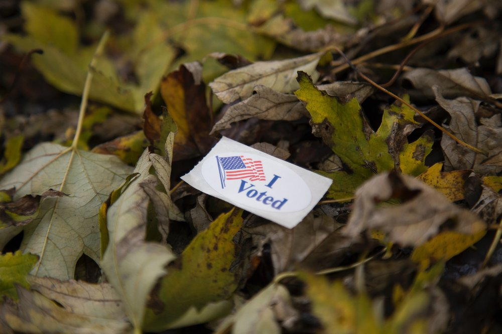 I voted sticker in fall leaves